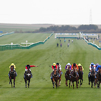 Newmarket 10th October