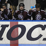 The Union College bench watch the action during the Yale Vs Union College, Men's College Ice Hockey game at Ingalls Rink, New Haven, Connecticut, USA. 28th February 2014. Photo Tim Clayton