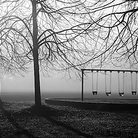 An empty swing surrounded by trees in the fog in a park