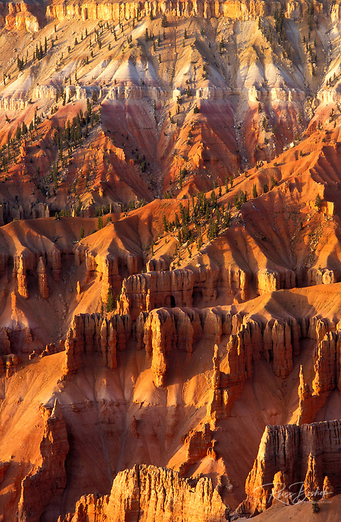 Afternoon light the Cedar Breaks Amphitheater from Point Supreme, Cedar Breaks National Monument, Utah