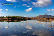 Small lake reflects clouds near Clifden, Ireland