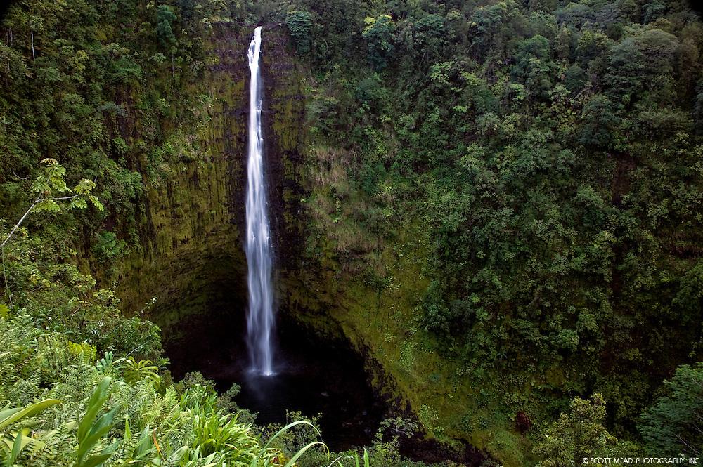 Akaka Falls, located in Hilo,  Big Island of Hawaii