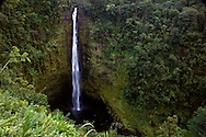 Akaka Falls, located in Hilo,  Big Island of Hawaii