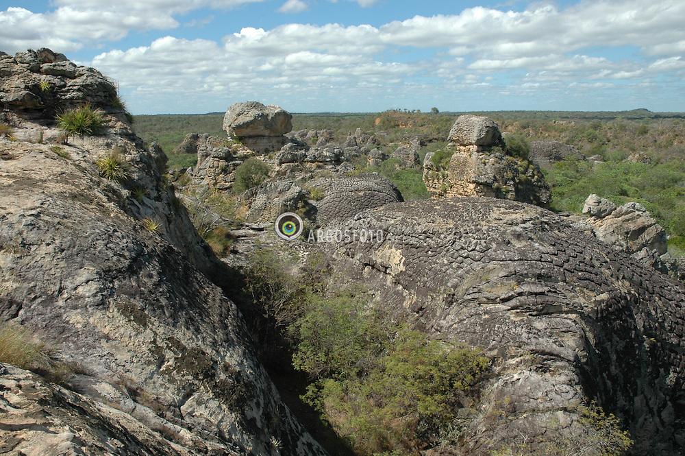 """O Parque Nacional de Sete Cidades eh um monumento natural localizado na parte nordeste do Estado do Piaui, Brasil. A area protegida total eh de 6221 hectares. Localizado na bacia sedimentar do Parnaiba, o Parque eh constituido em torno de afloramentos rochosos do Devoniano, recebendo a sua denominacao por apresentar sete agrupamentos de rochas isolados, cada um deles considerado uma """"cidade"""". O Parque eh administrado pelo IBAMA (Instituto Brasileiro de Meio-Ambiente e dos Recursos Naturais Renovaveis), entidade que tem a seu cargo as tarefas de conservacao, sinalizacao e acompanhamento dos visitantes./..The Seven Cities National Park is a natural monument located at the northeastern state of Piaui, Brazil.The total protected area is 6221 hectares.Located in the sedimentary basin of Parnaíba, the park consists of seven rocky outcrops of the Devonian, getting its name by presenting seven isolated groups of rocks, each taken a """"city"""". The  Park is administered by IBAMA (Brazilian Institute of Environment and Renewable Natural Resources), an entity that is in charge of conservation tasks, signaling and monitoring of visitors."""