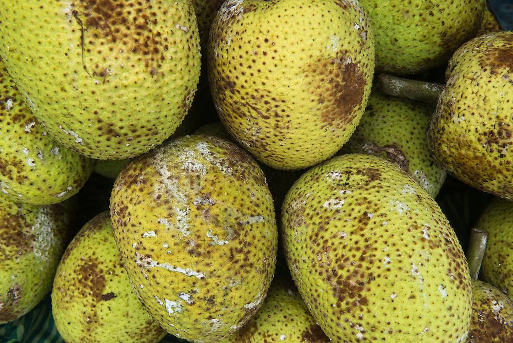 Breadfruit for Sale<br /> Suva Produce Market<br /> Suva<br /> Viti Levu<br /> Fiji. <br /> South Pacific