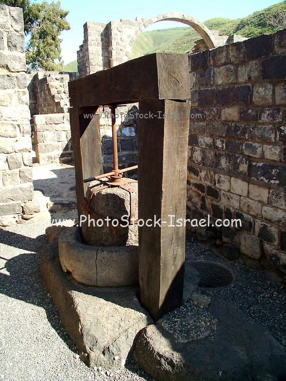 "olive oil press at Kursi, Israel Kursi is the Arabic name for the ruin on the eastern shores of the Sea of Galilee, Israel. During the mishnaic and talmudic periods this was a Jewish fishing village. Excavations revealed the remnants of the largest Byzantine-period monastery in Israel (123 by 145 meters). The monastery and the church inside it were built in the middle of the fifth century C.E. In the church, archeologists found a mosaic floor with pictures of animals (chickens, geese, doves, cormorants, and fish), and plants such as citrons, dates, pomegranates, and grapes. According to the New Testament, Jesus healed a man possessed by demons in Kursi. Mark relates that when Jesus disembarked from his boat, a ""man with an evil spirit came from the tombs to meet him."" A herd of swine was grazing in the area and Jesus cast the demonic spirits from the man to the swine. The swine then ran into the Sea of Galilee and drowned (Mark 5: 1-20)"