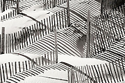 Sand fence and shadows on a Outer Banks beach.