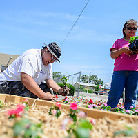062315  Adron Gardner/Independent<br /> <br /> James Silversmith III, left, and Sophina Bia work together planting a garden at the University of New Mexico north campus in Gallup Tuesday.