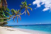 Beach, Kadavu, Fiji