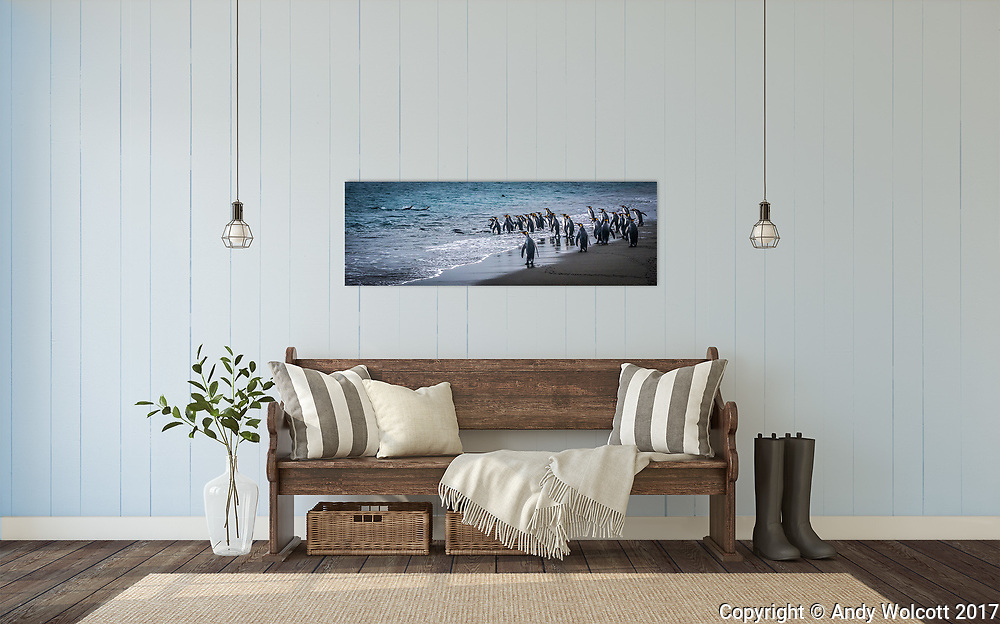 Room Display - Hall<br /> 20 X 60 canvas<br /> South Georgia King Penguins<br /> ID# 2016 1110 5045<br /> <br /> template by www.arianafalerni.com