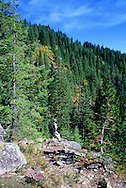 Backpacking along the Lewis and Clark National Historic Trail in the Bitterroot Mountains. Clearwater National Forest, Idaho