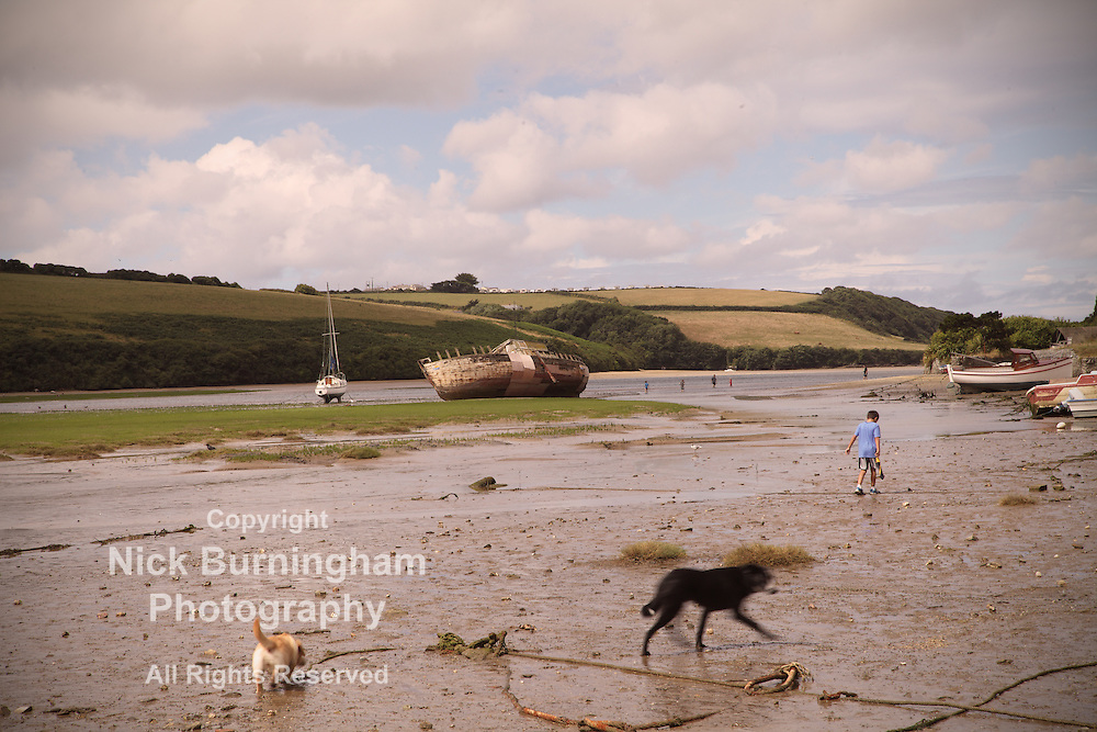 Cornish river scene - EXCLUSIVELY AVAILABLE HERE