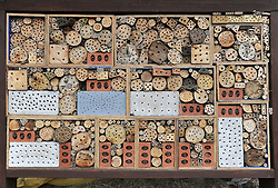 © London News Pictures. 28/01/11. Kent Wildlife Trust has constructed the world's largest bee house at its Sevenoaks Wildlife Reserve. Guinness World Records has confirmed that the structure created on 17 August 2010 now holds the record. The house measures 5m (15ft 5in) by 2.37m (7ft 9in) and took just four hours to build. PICTURED 17/08/2010: SEVENOAKS KENT. UK. Wildlife Trust staff and volunteers at Sevenoaks Wildlife Reserve in Kent create a new Guinness World Record by constructing a bee home measuring five metres by two metres. Photo credit should read Stephen Simpson/LNP