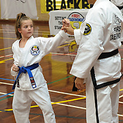 December 2018 Grading--Blue Belts and Brown-tips
