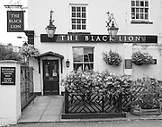 "Chiswick. Greater London. Public House ""The Black Lion"" - Chiswick Mall and embankment  Leading from Chiswick to Fulham Reach RC. Sunday.  24.07.2016  [Mandatory Credit: Peter Spurrier/Intersport-images.com]"