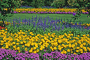 flower garden in Stanley Park<br /> Vancouver<br /> British Columbia<br /> Canada