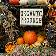 Organic produce for sale at a road-side stand in New England, USA
