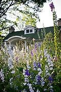 Gimghoul Gardens in bloom.