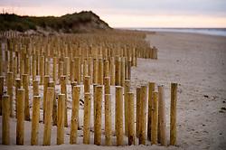 Erosion prevention measures on the beach at Thornham, North Norfolk Coast, England, UK.