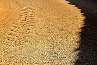 Reportage sul comune di Alessano per il progetto propugliaphoto..L'ombra di un muretto a secco corre parallelamente alla traccia sull'asfalto di un pneumatico di un trattore..Macurano è un villaggio rupestre considerato un luogo di scambio e commercio, simbolo della cultura dell'olio per la presenza ad oggi di alcune tracce nelle grotte e di frantoi funzionanti nella zona. L'insediamento è caratterizzato da una serie di grotte sia naturali che scavate nel calcare, cisterne per la raccolta dell'acqua, sistemi di canalizzazione che scendono da Montesardo, viottoli, scalette e vie più larghe con antiche tracce di carri..Si ritiene che in questo sito, un vero e proprio centro abitato ben organizzato distante circa quattro km dalla costa, i monaci basiliani scappati dall'oriente in seguito alla lotta iconoclasta, trovarono rifugio e si dedicarono all'agricoltura..L'area del villaggio rupestre fu sicuramente sfruttata in epoche successive, lo prova l'esistenza di ben tre masserie di cui una fortificata e i resti di una serie di costruzioni che fanno parte dei numerosi esempi di architettura rurale presenti in questo territorio. .Il complesso masserizio, denominato Macurano, edificato probabilmente nel Cinquecento include la Masseria di Santa Lucia e la cappella di Santo Stefano. La Masseria è dominata dal nucleo originario, ovvero dalla torre cinquecentesca coronata da beccatelli a sostegno del parapetto aggettante del terrazzo sommitale.