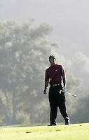 12 December 2004: Pro PGA golfer Tiger Woods on the 18th fairway before closing out the final round of days golf with 5-under-par 66 for a two-shot victory over Padraig Harrington (Ireland) at the 2004 Target World Challenge Presented by Williams held at the Sherwood Country Club in Thousand Oaks, CA.  Action portrait of PGA golf superstar Tiger Woods.
