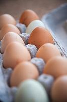 Organic chicken eggs in carton.