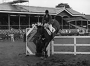 "07/08/1980<br /> 08/07/1980<br /> 07 August 1980<br /> R.D.S. Horse Show: John Player Top Score Competition, Ballsbridge, Dublin.  David Broome (Great Britain) on ""Queenway Sportsman""."