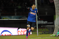 JOIE DE Dimitar BERBATOV  - 07.03.2015 -  Evian Thonon / Monaco -  28eme journee de Ligue 1 <br />Photo : Jean Paul Thomas / Icon Sport