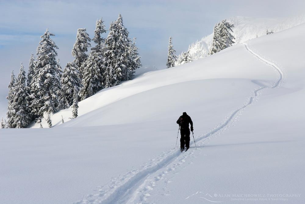 Backcountry Skier traverses slopes of Heather Meadows Washington