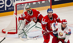 03.05.2013, Globe Arena, Stockholm, SWE, IIHF, Eishockey WM, Tschechische Republik vs Weissrussland, im Bild (CZE) 53 Goalkeeper Alexander Salak // during the IIHF Icehockey World Championship Game between Czech Republic and Belarus at the Ericsson Globe, Stockholm, Sweden on 2013/05/03. EXPA Pictures © 2013, PhotoCredit: EXPA/ PicAgency Skycam/ Johan Andersson..***** ATTENTION - OUT OF SWE *****