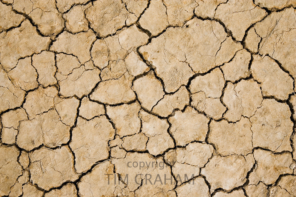 Dried cracked earth, Blakeney, Norfolk, United Kingdom