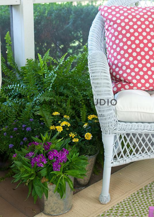 Plants on three-season porch