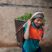 Nepal 2014. Manibanjan. Market day. Young boy carrying a basket of fern fronds, eaten as a vegetable.