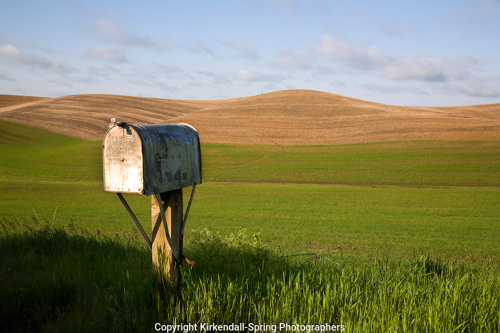 WA05484-00...WASHINGTON - Mailbox at the edge of grain fields near the town of Steptoe in the agricultural Palouse region.