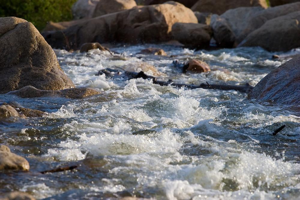 A cold mountain stream rushing through the Rocky Mountains.