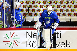 Gasper Kroselj of Slovenia during Ice Hockey match between National Teams of Italy and Slovenia in Round #5 of 2018 IIHF Ice Hockey World Championship Division I Group A, on April 28, 2018 in Arena Laszla Pappa, Budapest, Hungary. Photo by David Balogh / Sportida