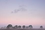 Dawn in Birkum, Denmark