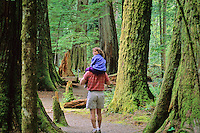 Dad walks with daughter in Giant Cedars forest, Port Alberni BC, Canada.