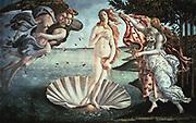 The Birth of Venus' c1485:  Sandro Botticelli (1444-1510) Italian (Florentine) artist.
