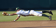 Baylor shortstop Paul Witt dives for a sharp ground ball in the fourth inning against the Texas Longhorns.  Texas defeated Baylor in the first round of the College World Series 5-1 at Rosenblatt Stadium in Omaha, Nebraska on June 18, 2005.