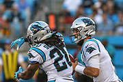 Carolina Panthers quarterback Kyle Allen (7) fakes the handoff to Carolina Panthers running back Jordan Scarlett (20) against Pittsburgh Steelers during a NFL football game, Thursday, Aug. 29, 2019, in Charlotte, N.C. The Panthers defeated the Steelers 25-19.  (Brian Villanueva/Image of Sport)