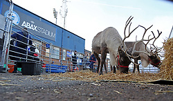 Reindeer in the Fan Zone outside of the ABAX Stadium home of Peterborough United before kick-off - Mandatory by-line: Joe Dent/JMP - 22/12/2018 - FOOTBALL - ABAX Stadium - Peterborough, England - Peterborough United v Walsall - Sky Bet League One