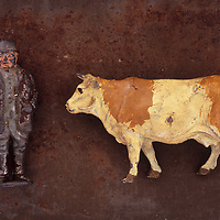 Close up of battered and scratched lead models of plump old farmer and white and light brown cow  lying on rusty metal sheet