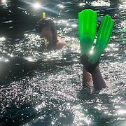 g adventures bay of islands summer 16