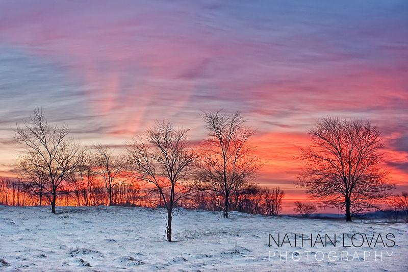 Winter sunrise with trees, pink, purple clouds,  Minnesota.