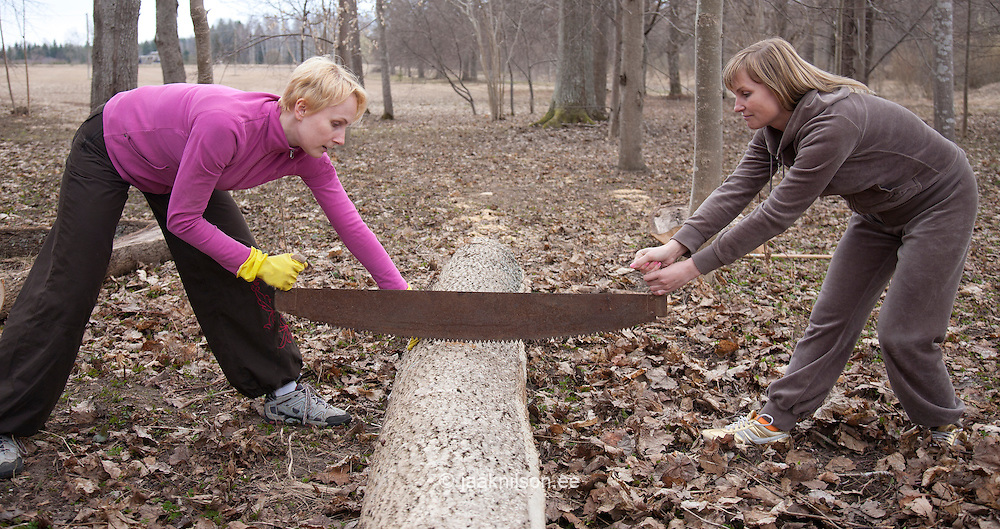 Caucasian Women Sawing Log using Old Two-Handed Saw