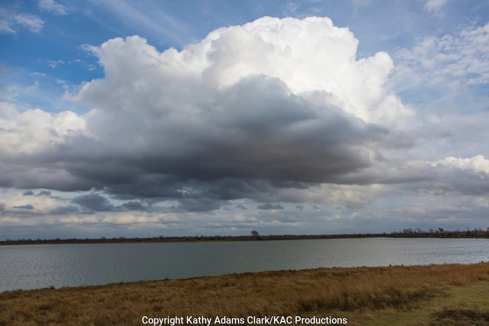 Cumulus cloud, over Warren Ranch Lake, on the Katy Prairie, west Harris County, Texas.