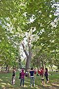 KINESON - yoga du corps et de la voix - Pratique libre enseignée par Anna Takahashi durant la journée de la lenteur   à  Parc Lafontaine / Montreal / Canada / 2018-06-21, Photo © Marc Gibert / adecom.ca