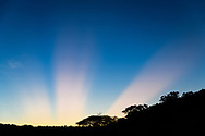 Post-sunset sunlight rays created by over-the-horizon clouds, with the slope of Bride's Bush Mountain, Phinda Game Reserve, South Africa, © 2019 David A. Ponton