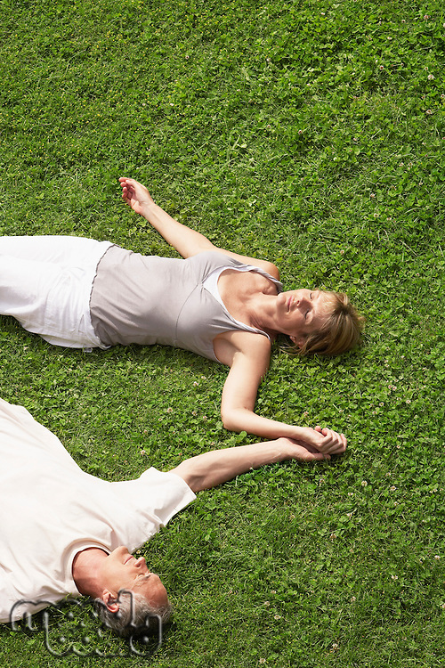 Middle-aged couple together sleeping on grass high angle view